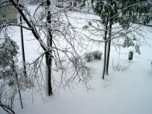 sniezycapic01485